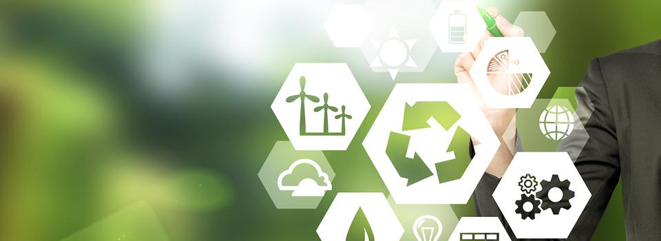 Umweltzeichen: Öffentliche Vergabestellen müssen Ökosiegel- und Wertungskategorien abgleichen.